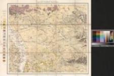 Geognostische Karte von Oberschlesien : und den angrenzenden Gebieten. Section 8: Gleiwitz